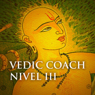 vedic coach nivel 3
