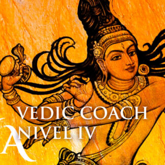 vedic coach nivel 4